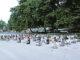 Siswa SMA Xaverius bermeditasi di Pantai Natsepa, Ambon.[HIDUP/Fr Sandy Ohoiledwarin]